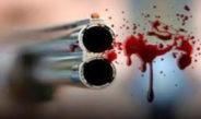 Κεφαλονιά: 25χρονος πυροβόλησε πέντε φορές τη μάνα του κι εξαφανίστηκε